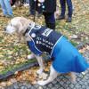 Demonstration_fuer_die_Zusammengehoerigkeit_mit_Hunden-15.11.15-26