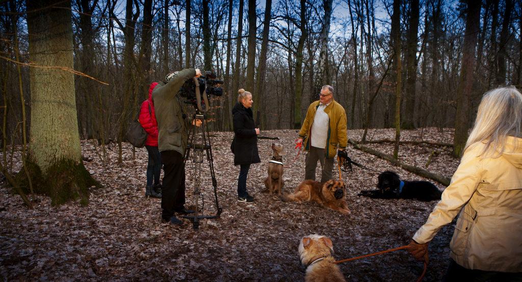 Foto vom Interview TV Berlin mit Rainer Burisch, Vorstandsmitglied der BI Berliner Schnauzen e.V.